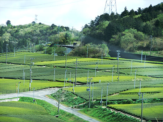 Ochabatake.jpg