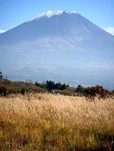 fujiphoto4.jpg