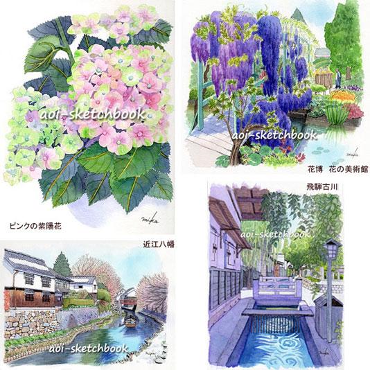mikaikenoya2606183.jpg