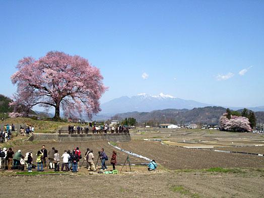 yamanashi2.JPG