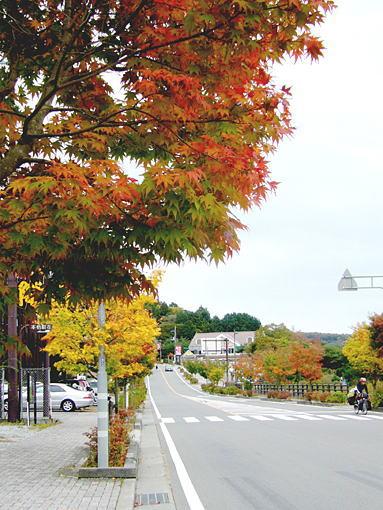 fujimotos2.jpg