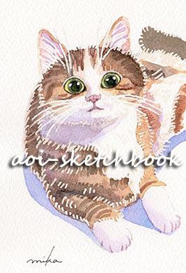 gatto_di_professore.jpg