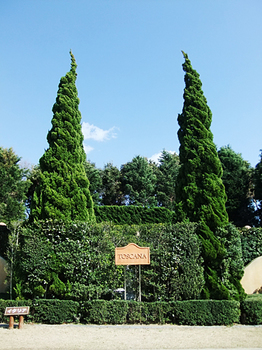 gardenpark2.jpg