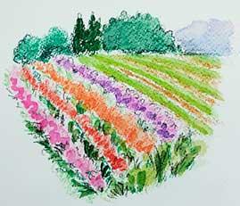 watercolorpencil.jpg