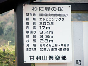 yamanashi3.JPG